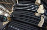 Boyau hydraulique d'essence d'En853 2sn 1/4