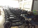 Vespa eléctrica 2017 de la motocicleta 2 de Citycoco 1000W de la movilidad de la ciudad del neumático gordo eléctrico adulto sin cepillo de las ruedas