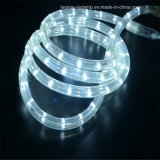 Best Wholesale Y2 LED Rope Light with Reasonable Price