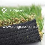 庭または景色(SUNQ-AL00055)のための総合的な泥炭
