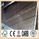 1220*2440mm China Construction Formwork Film Faced Plywood