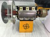 Elektrischer Strom-Generator mit Basler AVR doppelter Peilung