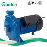 Bomba centrífuga de escorvamento automático doméstica de fio de cobre da irrigação com caixa plástica
