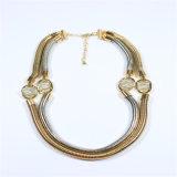De nieuwe Manier van het Punt parelt de Halsbanden van Juwelen