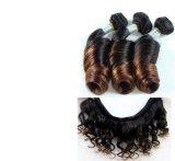 Het maagdelijke Menselijke Haar die van de Krul van Afrika van het Haar Gemengde Kleur weven