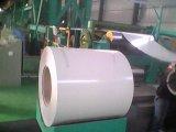 冷間圧延された技術PPGIは電流を通された鋼鉄コイルをPrepainted