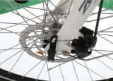 Elgantの女性の電気充満バイクのための新しい中央モーター電気バイク