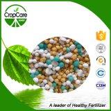 Alta qualità NPK granulare composto 20-20-15+Te