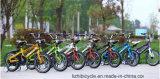 Bicyclette populaire d'enfants de vélo d'élève pour de jeunes types