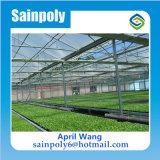Estufa Hidroponica do policarbonato do baixo custo para agricultural