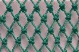 Varietà Size di P.E. Braided Nets