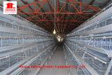 Equipamento das aves domésticas da alta qualidade do baixo preço para gaiola Breeding da galinha da grelha da camada