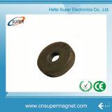De gesinterde Harde (60-32*10mm) Magneet van het Ferriet van het Barium