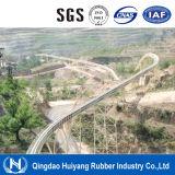 2016 горячая конвейерная шнура сбывания DIN22103 стандартная Масл-Упорная стальная