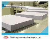 Papel de placa frente e verso revestido branco para a impressão