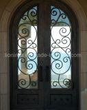 Novos tipos dianteiros Top-Selling portas das portas do ferro feito de entrada