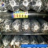 Tela preta da paisagem do bloco de China Weed