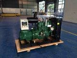 30kw Steyr 천연 가스 발전기