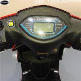 60V-20ah-1000Wスクーター/土のバイク