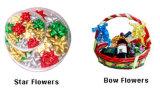 Fleurs d'étoile de cadeau et fleurs d'arc