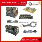 Molla di valvola delle parti di motore del camion di Dongfeng 6L 4936076