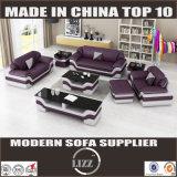 Miami-modernes ledernes Sofa (LZ1388)