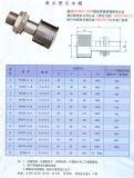 水フィルターのためのSs 316の樹脂のトラップVワイヤー砂フィルターノズル