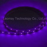 실내 옥외 단 하나 색깔 SMD 3528 LED 지구 빛