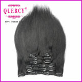 Clip poco costosa nelle estensioni dei capelli, 100% capelli del Virgin, capelli superiori della clip