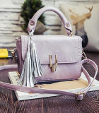 Una nuova borsa Sy7775 delle 2017 delle donne del messaggero dei sacchetti di Crossbody del sacchetto donne del sacchetto