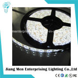 UL ETL 12V 24V SMD3528 Flexible LED Strip Light