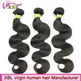 自然なカラー毛のDyeableのインドの未加工バージンの毛