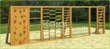 Cour de jeu extérieure réglée s'élevante en bois de mur de Kaiqi (KQ60087B)