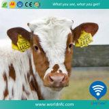 Marque d'oreille animale bon marché de fréquence ultra-haute 960 mégahertz