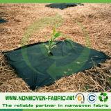 Tissu non-tissé de pp Spunbonded pour la couverture d'arbre