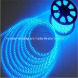 공급 Hv SMD3014 LED 유연한 지구 빛