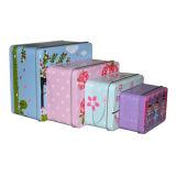 Kosmetische verpackenschönheits-Geräten-Holding-Blechdose