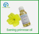 Nachtkerze-Öl des neuen Produkt-2016