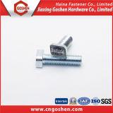 Aço inoxidável 304 parafuso principal quadrado de 316 T