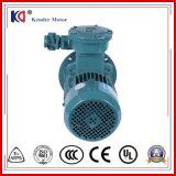 Yb2 Yb3耐圧防爆AC電気(電気)モーターはとの電圧をカスタマイズする