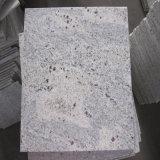 Плитка Кашмира камня гранита ввоза Индии белая для сляба/Countertops