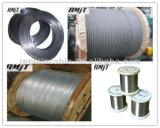 고품질 Galvanzied 철강선 밧줄