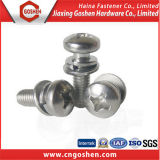 Edelstahl Slotted Head Screw mit Hex, Pan, Flat, Round Head
