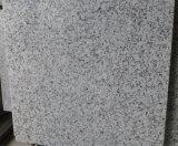 백색 화강암 Bala 백색 화강암