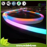 110V imprägniern Mini-LED-Gefäß-Neon mit 2 Jahren Garantie-
