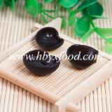 Verdura sana organica del fungo del nero dell'alimento verde più poco costosa