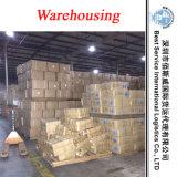 China perita Shipping Agent - Container Shipment a África (remetente de Freight)