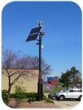 generador de turbina vertical de viento 300W para la luz de calle