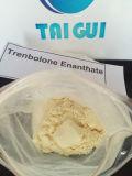 Tren E aufbauende rohe Einspritzung-Steroid Puder Trenbolone Enanthate Puder für Muskel-Gebäude