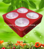 Freies Sample Indoor Plant COB Full Spectrum 300W LED Growlight